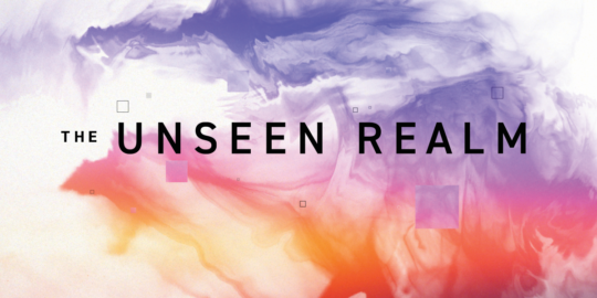 Unseen Realm Study